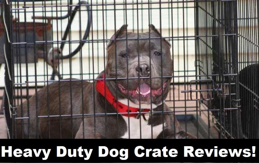 Best Heavy Duty Dog Crates in 2018 - Escape Proof & Indestructible!